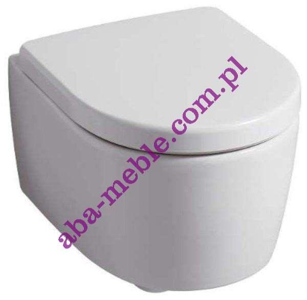 Roca zestaw podtynkowy wc